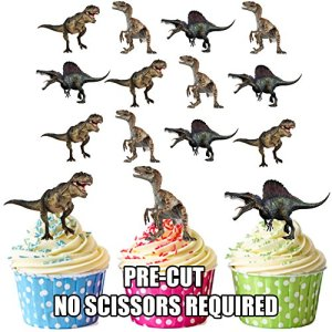 PRE-Cut Dinosaurs Carnivore Mix – Edible Cupcake Toppers/Cake Decorations (Pack of 12) 616Ixw5NssL