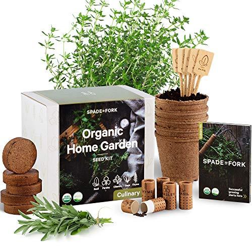 Indoor Herb Garden Starter Kit - Certified 100% USDA Organic Non GMO - Potting Soil, Peat Pots, 5 Herb Seed Basil, Cilantro, Parsley, Sage, Thyme - DIY Kitchen Grow Kit for Growing Herb Seeds Indoors