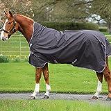 Product review for Horseware Amigo Bravo 12 Wug Lite Sheet 81