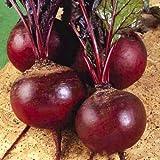 Seeds Vegetable Organic Beetroot Detroit Original from Ukraine 3 Gram