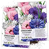 Seed Needs, Polka Dot Cornflower (Centaurea cyanus) Twin Pack of 1,500 Seeds Each