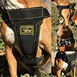 Dog Vest Harness Padded Adjustable Heavy Duty Attachment Links Strong Dog Harness Step in Dog Harness Large Dogs Sturdy Enough for Any Breed | Pitbull Boxer Husky Rottweiler Belgian Malinois Bulldog