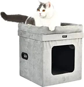 Amazon Basics Collapsible Cat House with Bed