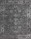 Unique Loom 3134057 Sofia Collection Traditional Vintage Beige Area Rug, 8' x 10' Rectangle, Dark Gray