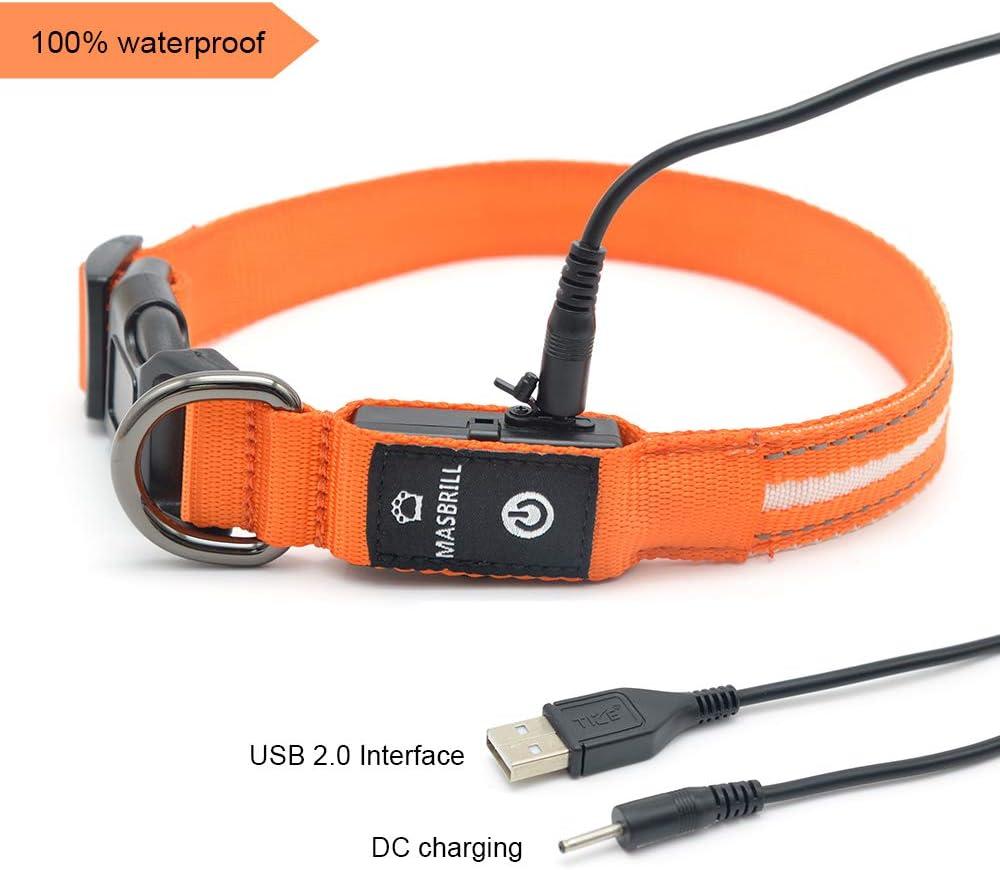 MASBRILL Cuello de Seguridad LED súper Brillante DC Recargable para Perros - excelente Visibilidad y Seguridad - Resistente al Agua (L(60X2.5cm), Naranja)