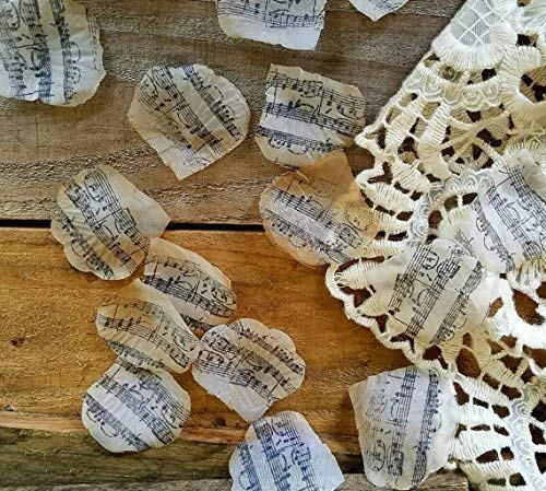 music theme wedding decorations rose petals confetti bridal shower decorations