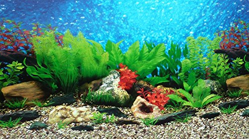 "New 9088 20"" x 48"" Fish Tank Background 2 Sided River Bed & Lake Background Aquarium 2"
