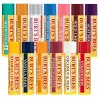 Burts-Bees-Beeswax-Bounty-Holiday-Gift-Set-4-Lip-Balms-in-Gift-Box-Assorted-Flavors