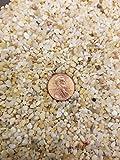 Coarse Silica Sand 1 Quart for Bonsai, Cacti, Succulent, and Carnivorous plant mix