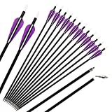 Hunter Colored Fletched Carbon Arrows with Replaceable Tips for Recurve and Compound Bow 12-pack