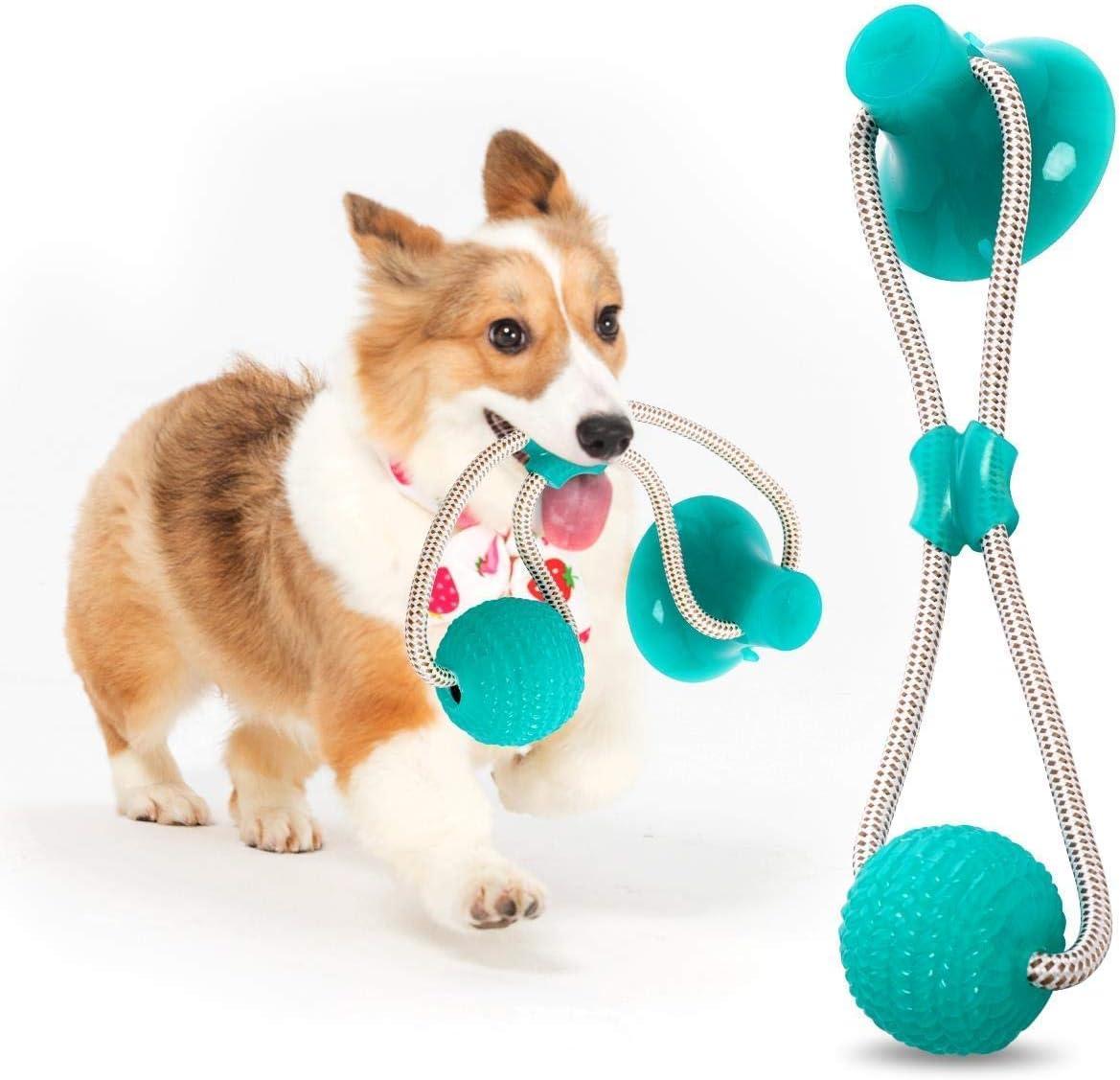 GHONLZIN Multifunction Pet Molar Bite Toy, Juguete Mordedor Mascota, Juguete Multifuncional para mordedura de Molar, Mordedura de Perro del Entrenamiento con Ventosa (Green)