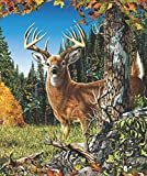 JPI Find 9 Deer Fleece Blanket - Throw Size - Signature Blanket - Designed by Steven Gardener - Officially Licensed Blanket - Special Edition - 50'' x 60'' - Super Soft Blanket - 100% Polyester