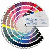 Color Me A Season Color Fan - Winter