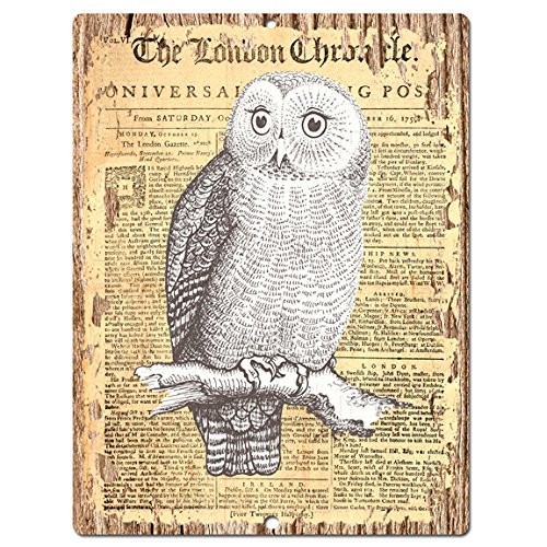 Eclectic, Fun and Charming Owl Wall Decorations | Home Wall Art Decor