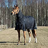 Product review for Horze Avalanche 1200D Heavy Weight Combo Turnout Black 78