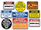 10-Pack of Funny Hard Hat Stickers. These Vinyl Decals are Awesome, Funny, Badass, and Cool. Best for Adult Men and Women. All are a Must Have Hardhat Accessory for Construction Workers, Union, etc.