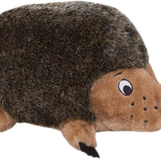 61UZk4gnL9L. AC SL1500 Best squeak toys for dogs – which is for yours?