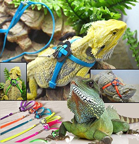 RZRZOO Adjustable Reptile Lizard Harness Leash Multi Color Light Soft Fashion Pet Small Animal,Random Color 1