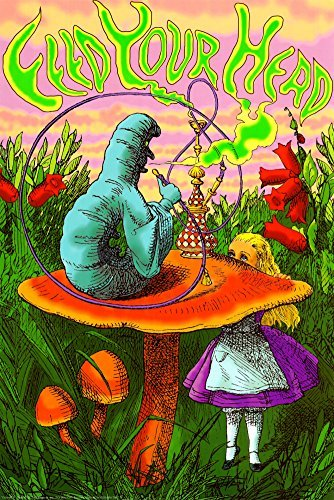 Image result for alice in wonderland mushroom
