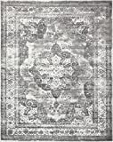 Traditional Persian Vintage Design Rug Gray Rug 8' x 10' FT (305cm x 244cm) Sofia Area Rug Inspired Overdyed Distressed Fancy