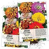 Seed Needs, Zinnia Crazy Mixture (Zinnia elegans) Twin Pack of 250 Seeds Each