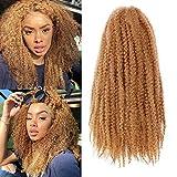 3Packs Kinky Marley Braids Hair Afro Marley Twist Braiding Hair Synthetic Jamaican Twist Braid Hair Extensions (27#)