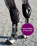 Product review for Ice Horse Pair Pony Hock Wraps for Equine Therapy - Comes with 6 Ice Packs