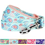 "Blueberry Pet 5 Colors Paisley Flower Print Dog Leash with Soft & Comfortable Handle, 4 ft x 1"", Pastel Blue, Large, Leashes for Dogs"