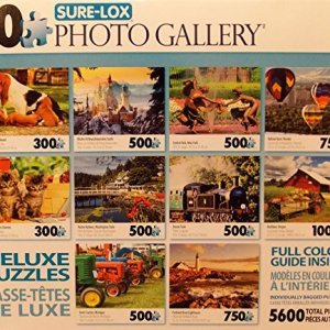 Sure-Lox Collection of 10 Deluxe Puzzles Of an Amazing Photo Art Gallery – 5600 Jigsaw Puzzle Pieces By Various Artists (BLUE BOX) 61hR6jOIROL