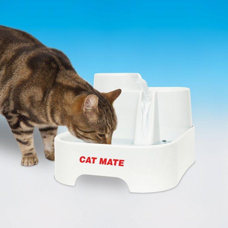 PetMate 80850 Trinkbrunnen von Pet Mate