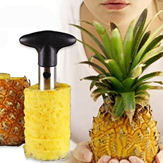 Rienar Easy Tool Stainless Steel Fruit Pineapple Corer Slicer Peeler Cut Stem Remover
