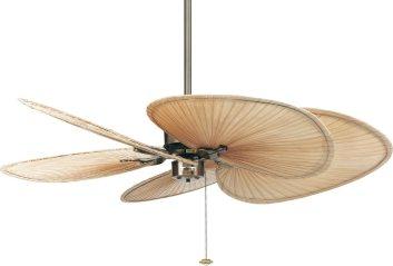 Fanimation FP320AB1 ceiling fan