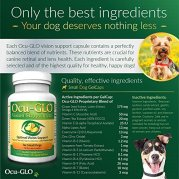 Ocu-GLO-Vision-Supplement-Animal-Necessity-Lutein-Omega-3-Fatty-Acids-Grapeseed-Extract-Support-Optimal-Eye-Health-Vision-in-Dogs-Antioxidants-for-Canine-Ocular-Health