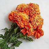 Factory Direct Craft Orange Poly Silk Artificial Marigold Bush | Day of The Dead, Día de Muertos, Fall Harvest Flowers
