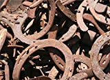 Product review for 30PCS AUTHENTIC CERTIFIED HORSESHOE USED RUSTIC PREWORN CRAFT HORSE SHOE GOOD LUCK