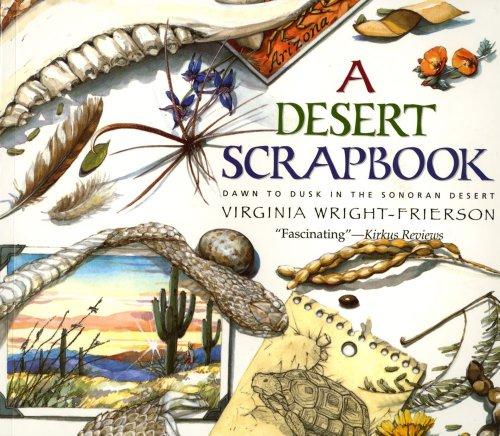 A Desert Scrapbook: Dawn to Dusk in the Sonoran Desert