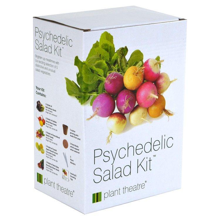 Grow Your Own Salad Kit