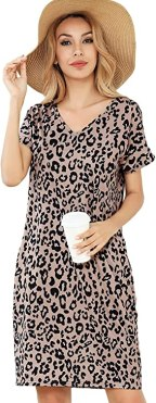 Women's Short Sleeve Dress Print Summer Casual V Neck Mini Dress