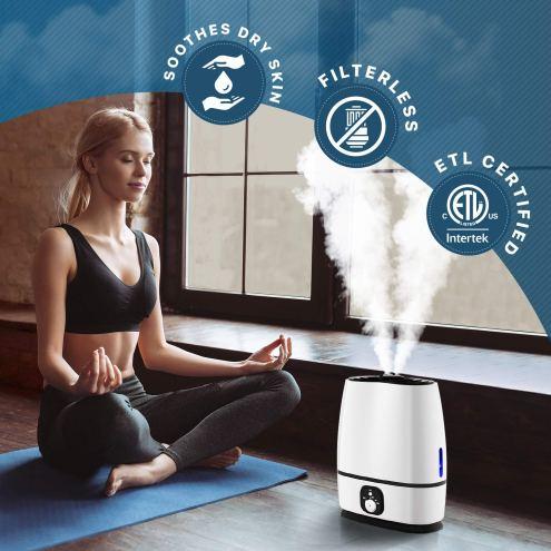 Best Humidifier On Amazon