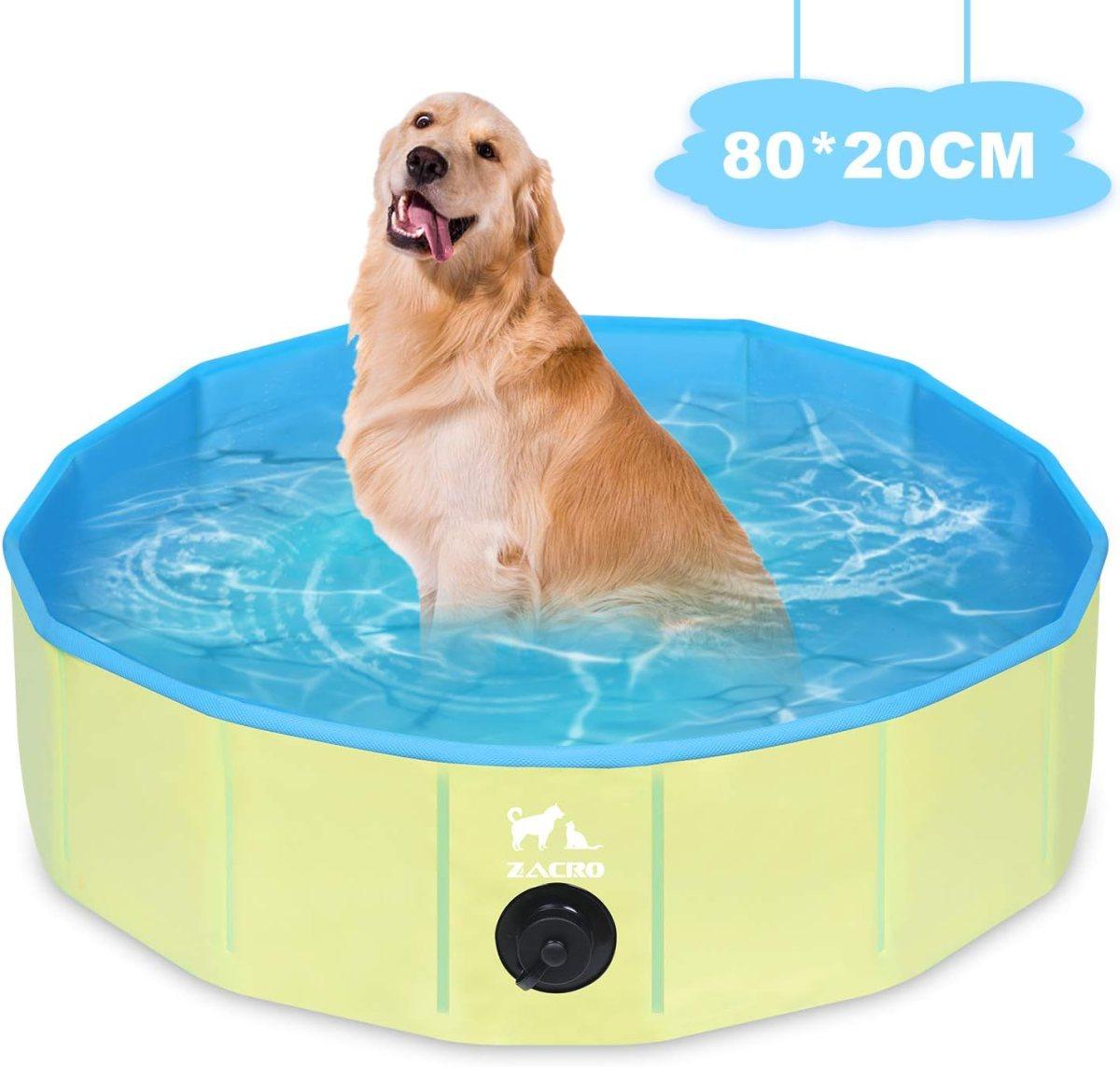 Piscina Plegable para Perros