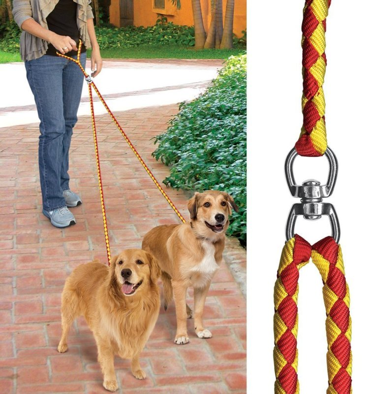 Double Dog Safety Leash