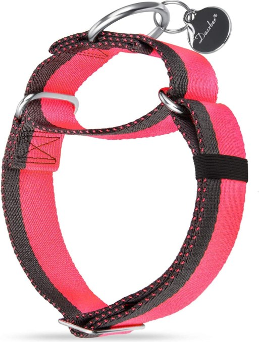 71I3PnzW59L. AC SL1500 Best Dog Collar For Pulling That Keep Your Walks Struggle-Free