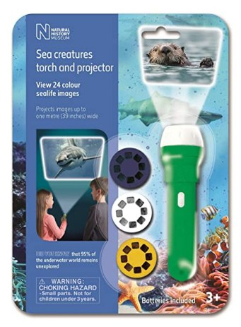 Image result for natural history sea creatures