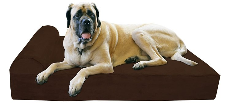 Orthopedic Bed for Large Dogs