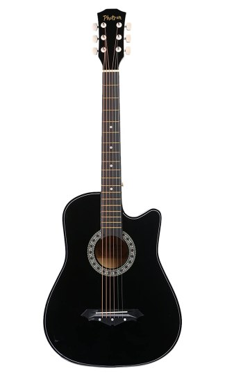 Photron Acoustic guitars