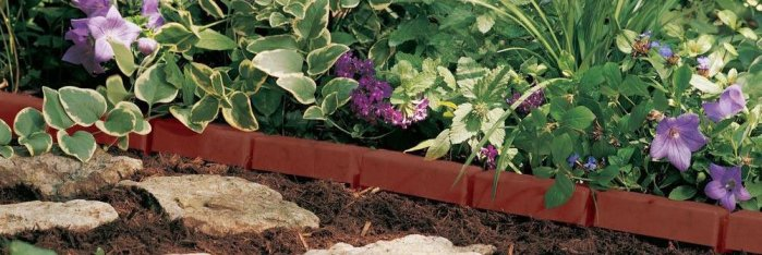 landscape edging borders
