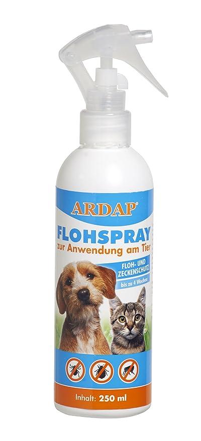 Ardap Flohspray Zur Anwendung Am Tier Mittel Zur Gezielten Flohbekämpfung Von Hunden Und Katzen Bis Zu 4 Wochen Schutz 1 X 250 Ml