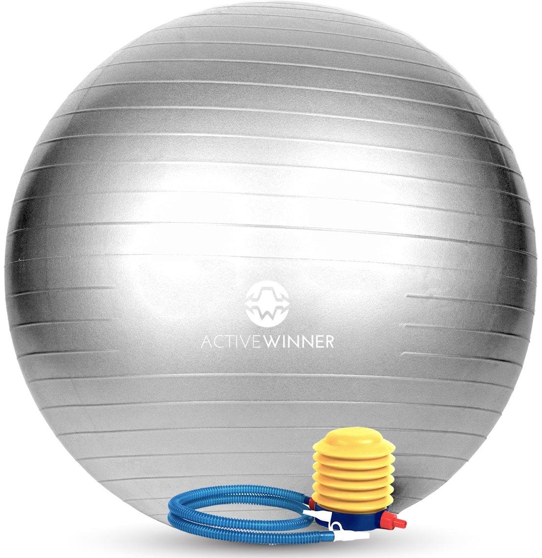 Active Winner バランスボール 65cm