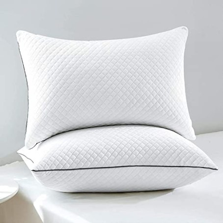 "GOHOME Standard Pillows Set of 2, Bed Pillows Full Size for Sleeping with Luxury Velvet Fabric, Down Alternative Hyperallergenic Pillows for Side and Back Sleepers, 20""x26"""