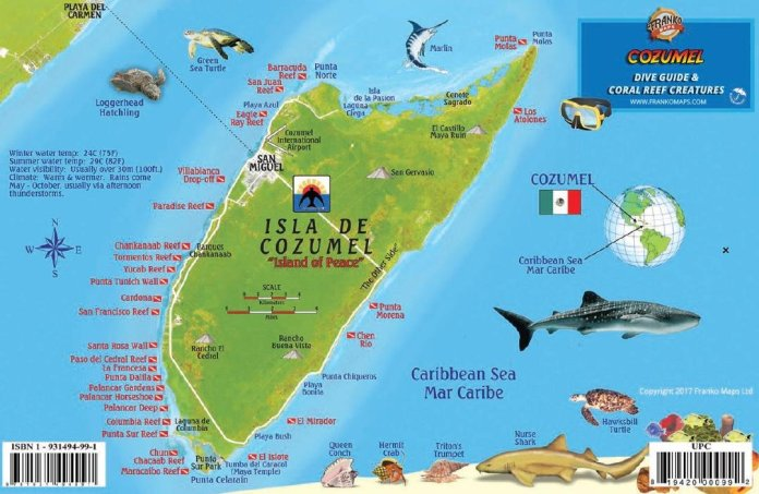 Cozumel Dive Map & Reef Creatures Guide Franko Maps Laminated Fish ...
